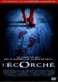 ECORCHE - L | SHALLOW GROUND | 2004